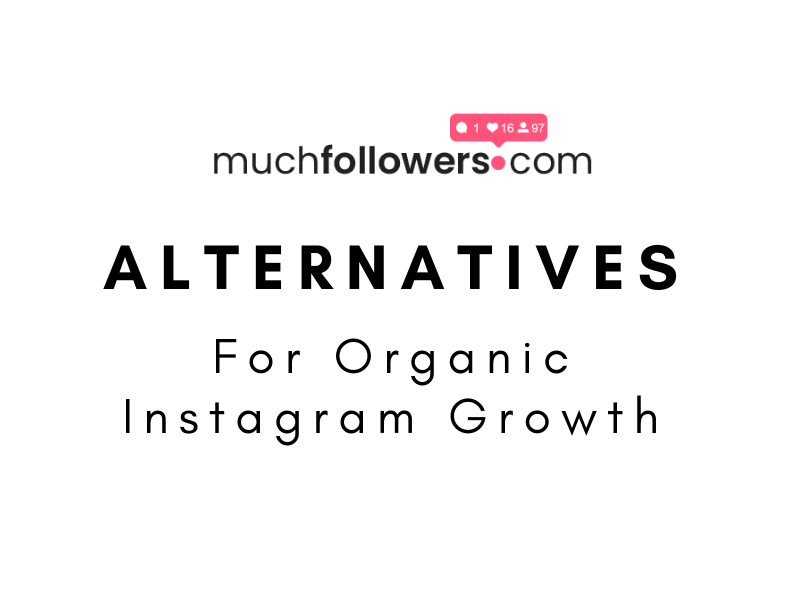 Muchfollowers Alternative For Organic Instagram growth
