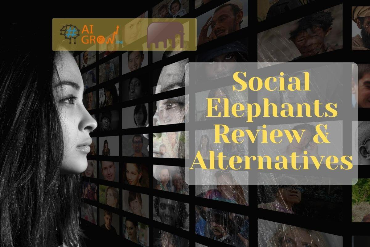 Social Elephants: reviews and alternatives in 2021