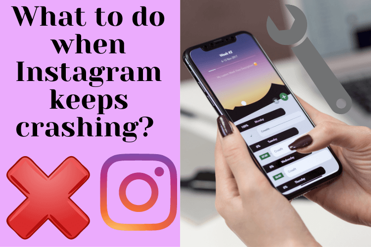 What to do when Instagram keeps crashing? (Top easy solutions)